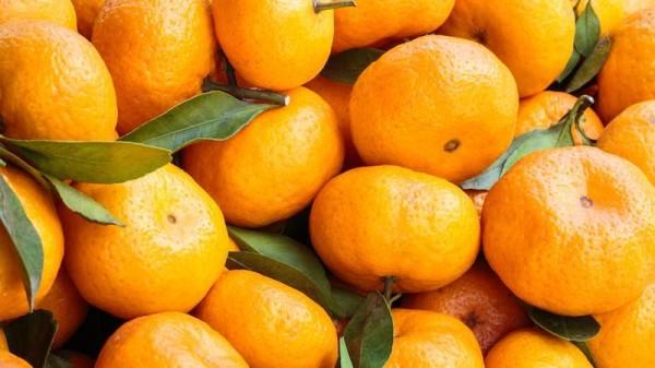mandarin-fakty